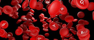 KYT blood cells with types pod image.jpg