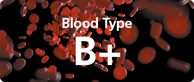 29720 000np Know Your Type - Web Buttons 400px x 170px (Blood Type) B+.png