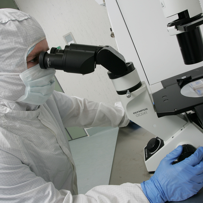 A man inspects cells under a microscope