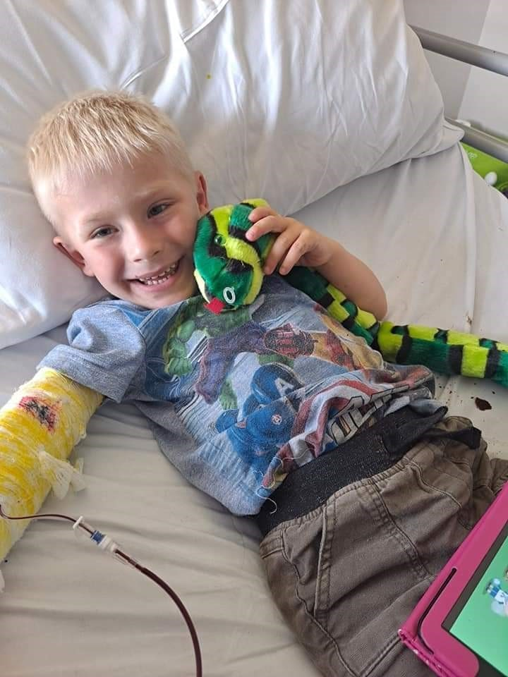 Archie cuddles a toy snake on his bed while having a blood transfusion
