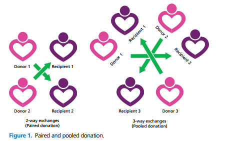 Paired and pooled donation - 2 way exchanges and 3 way exchanges