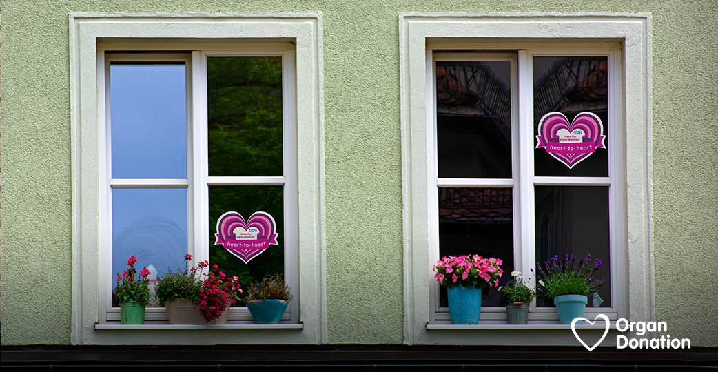 Two neighbouring windows display their Organ Donation hanging hearts to show their pledges to have the conversation