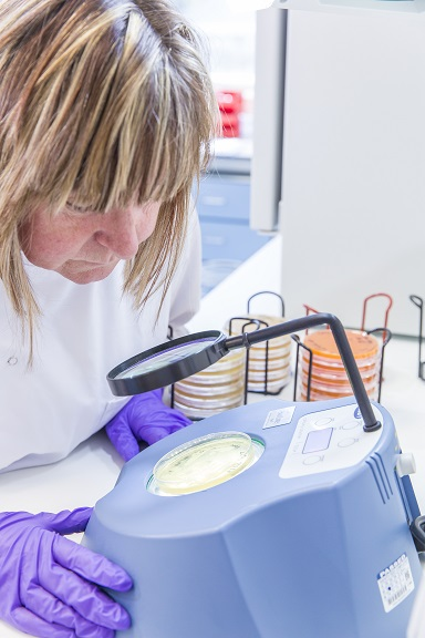 A scientist carrying out a quality control assay