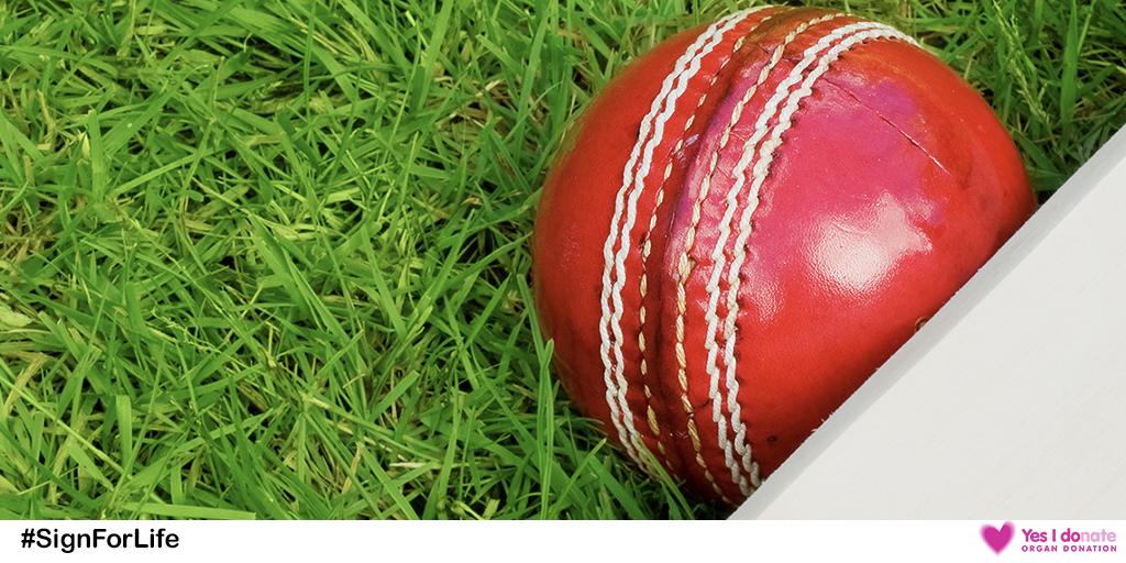 Cricket ball Facebook image